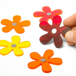 AG-03, Summer Flowers, Blumenmagnete in Sommerfarben, 5er-Set
