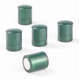 M-PC/greent, Aimants tableau cylindriques, aimants néodyme avec capuchon en plastique, Ø 14 mm, vert transparent