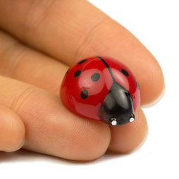 LIV-53, Ladybird, deco magnets shaped as ladybirds, set of 6